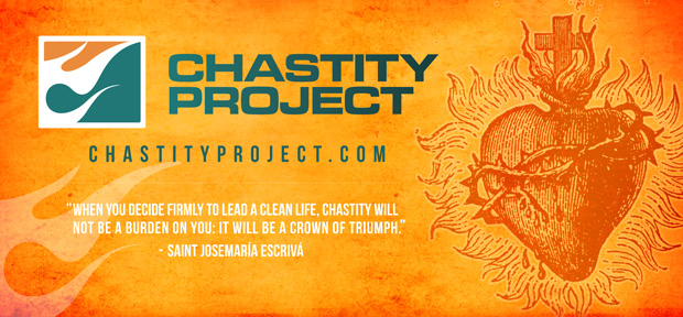 Image result for the chastity project